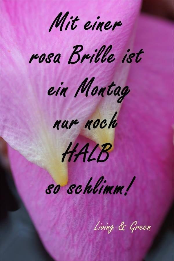 Hallo schönen montag - Hallo schönen montag