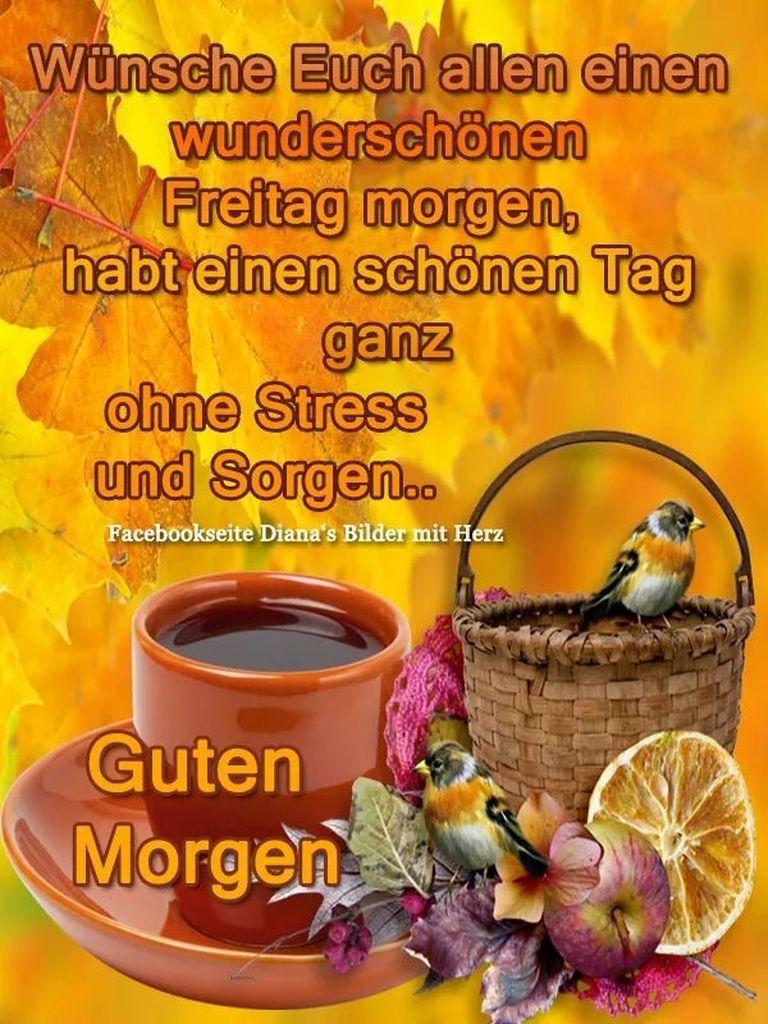 Schönen Freitag Kaffee Bilder Und Sprüche Für Whatsapp Und