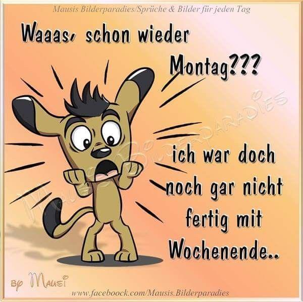 Schonen Montag Gif Bilder Und Spruche Fur Whatsapp Und Facebook