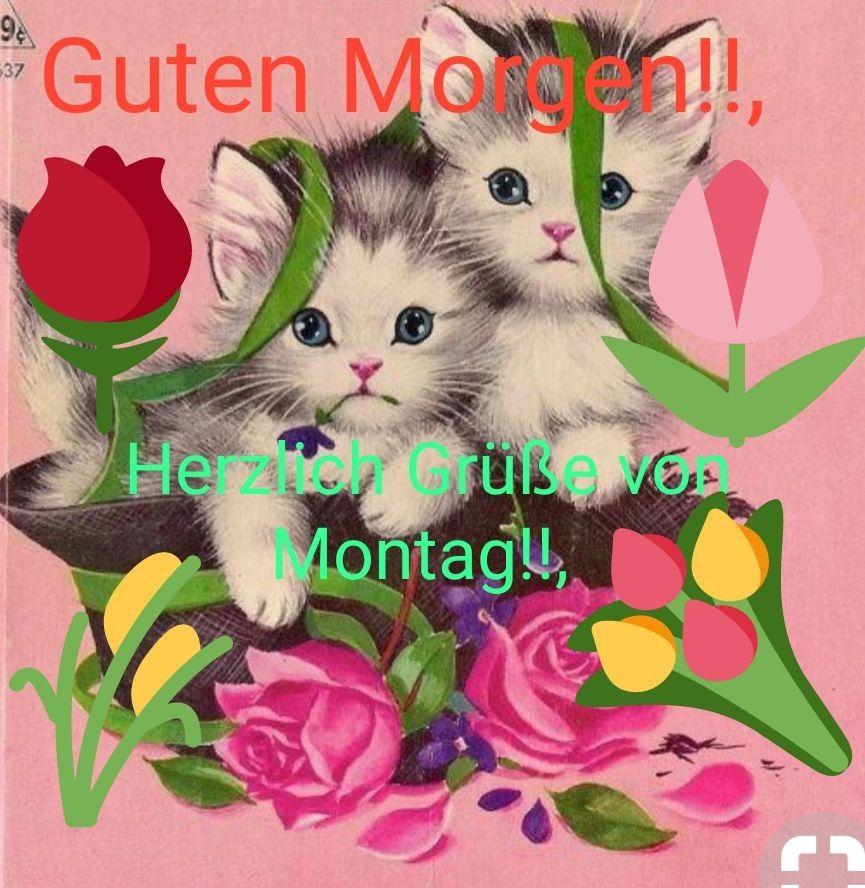 Schönen Montag Grüße Bilder Und Sprüche Für Whatsapp Und
