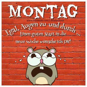 Coole Sprüche Montag Bilder Und Sprüche Für Whatsapp Und
