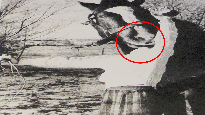 gruselige bilder von früher - Gruselige bilder von früher