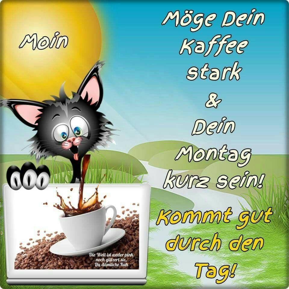 Bilder Von Montag Morgen Bilder Und Sprüche Für Whatsapp Und