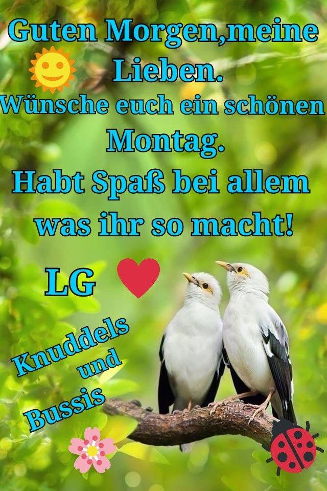 Whatsapp Status Spruche Montag Bilder Und Spruche Fur Whatsapp