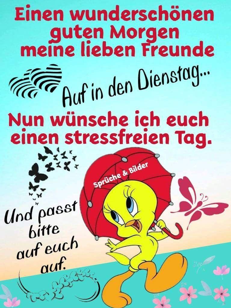 Dienstag Lustig Bilder Und Sprüche Für Whatsapp Und