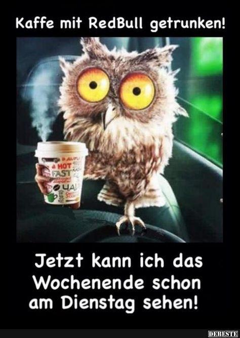 Lustig Dienstag Morgen Gruss Bilder Und Spruche Fur Whatsapp Und