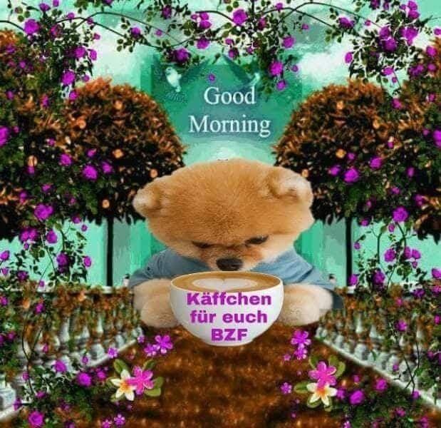 Einen schönen guten morgen spruch - Einen schönen guten morgen spruch