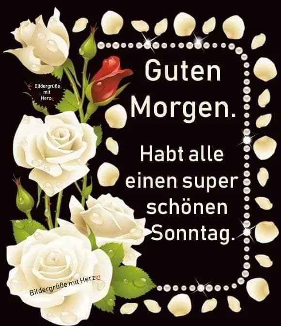 Spruch Schönen Sonntag Bilder Und Sprüche Für Whatsapp Und