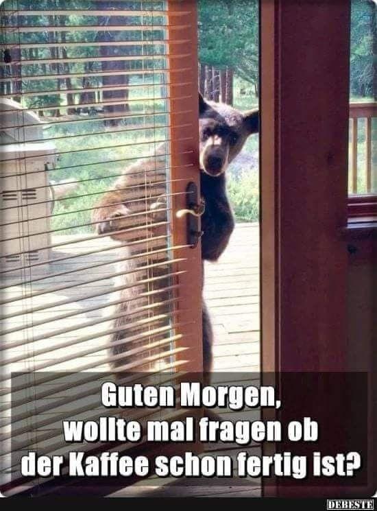 Guten morgen österreich - Guten morgen österreich