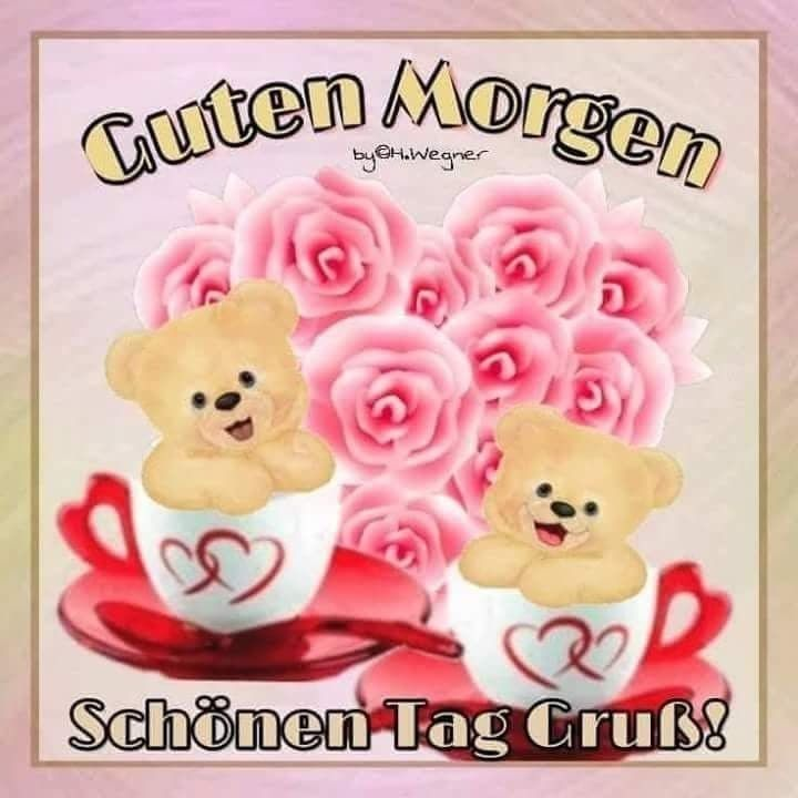 Guten morgen eule - Guten morgen eule