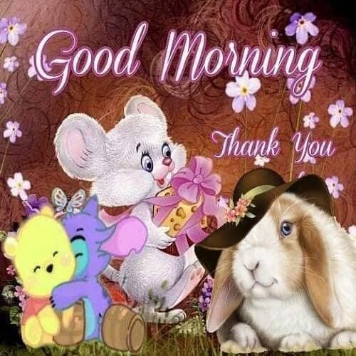 Guten morgen facebook - Guten morgen facebook