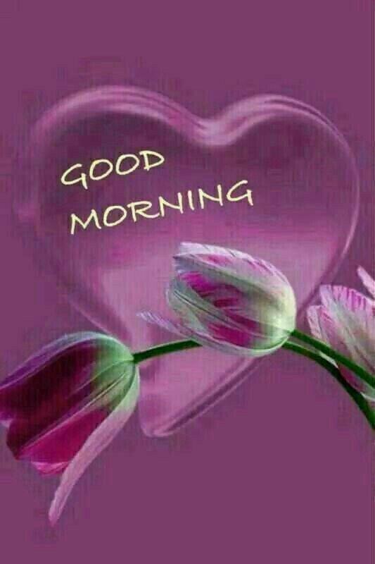 Guten morgen guten morgen guten morgen sonnenschein - Guten morgen guten morgen guten morgen sonnenschein