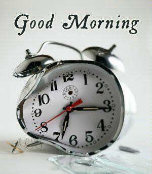 Guten Morgen Guten Tag Lied Bilder Und Sprüche Für