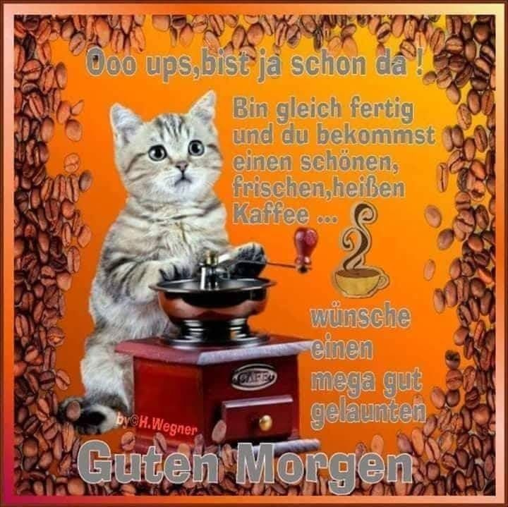 Guten morgen kaffeetasse - Guten morgen kaffeetasse