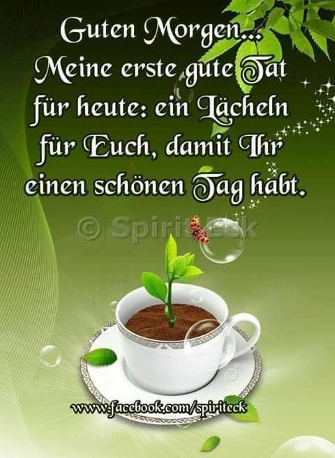 Guten Morgen Liebe Bilder Und Spruche Fur Whatsapp Und Facebook