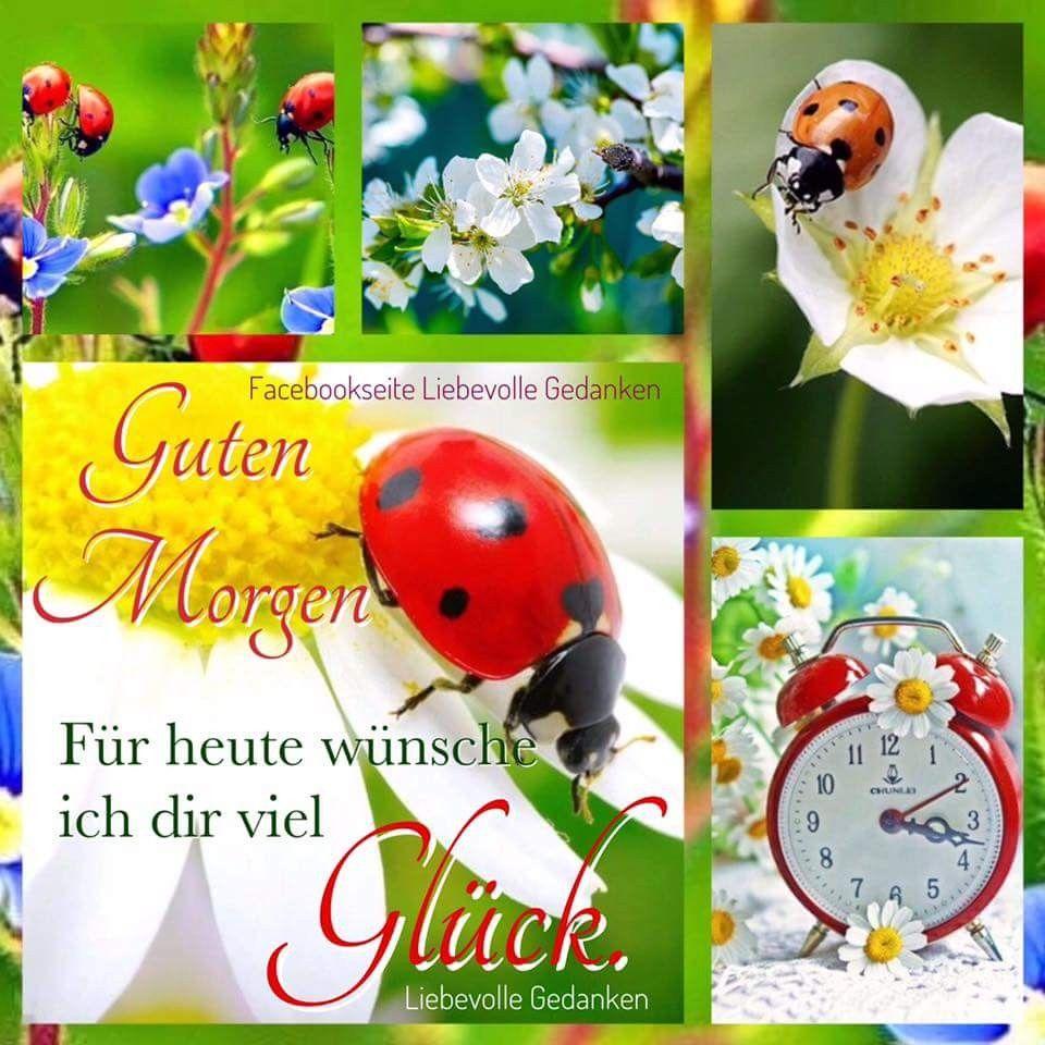 Guten morgen liebes spruch - Guten morgen liebes spruch