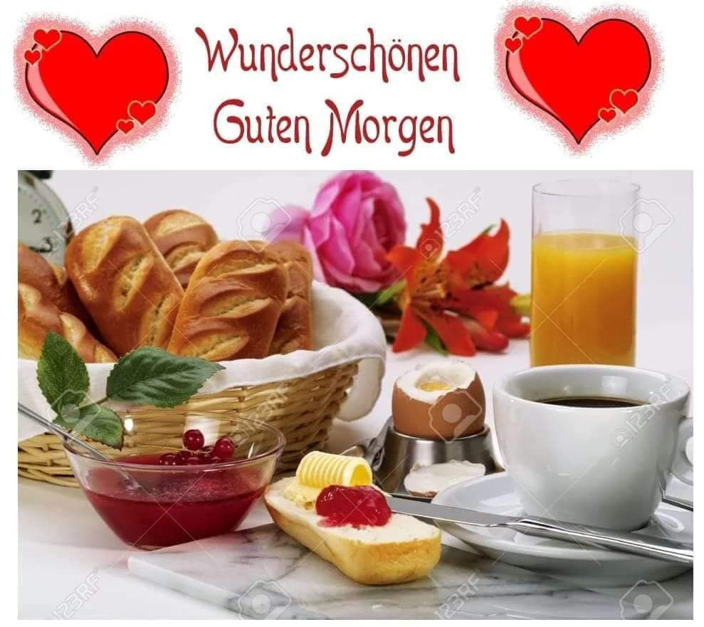 Guten morgen meaning - Guten morgen meaning