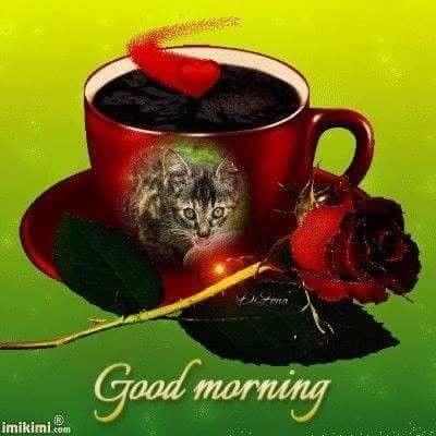 Guten Morgen Mein Liebster Schatz Bilder Und Sprüche Für