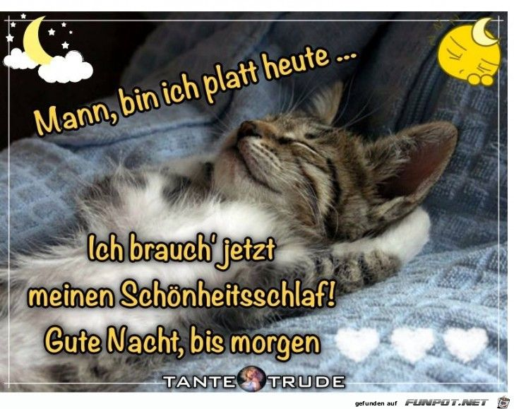 Guten Morgen Mit Bild Bilder Und Sprüche Für Whatsapp Und