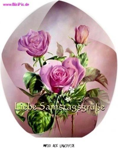 Guten Morgen Samstag Bilder Blumen Bilder Und Spruche Fur