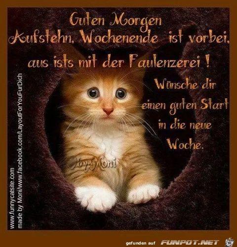 Guten Morgen Sms Liebe Bilder Und Sprüche Für Whatsapp Und