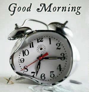 Guten morgen sonntag - Guten morgen sonntag