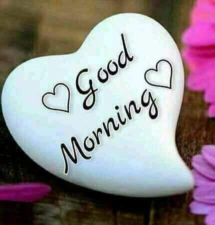 Guten Morgen Darling Bilder Und Sprüche Für Whatsapp Und