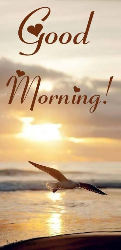 Guten Morgen Urlaub