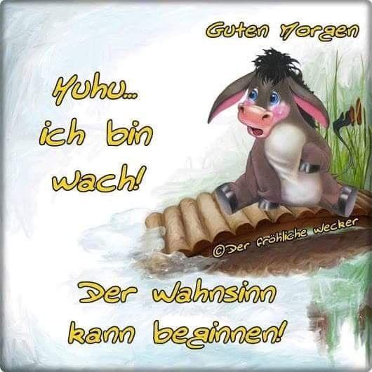 Ich Wünsche Dir Einen Schönen Tag Sprüche Bilder Und