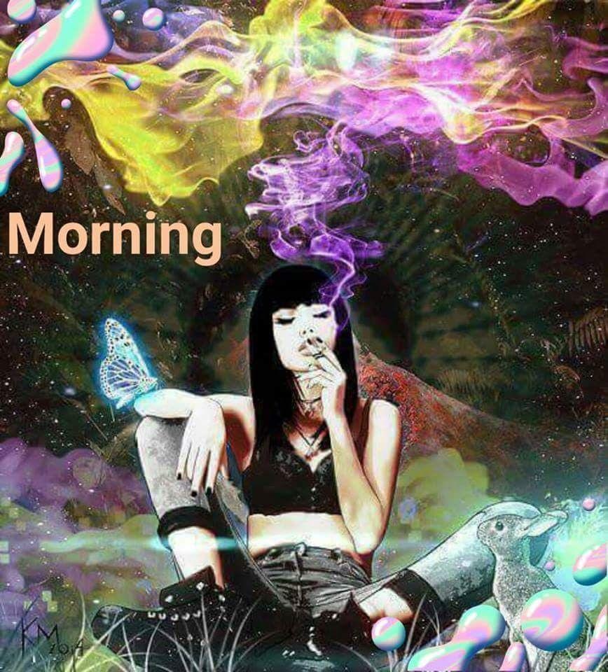 Lustige guten morgen lieder - Lustige guten morgen lieder