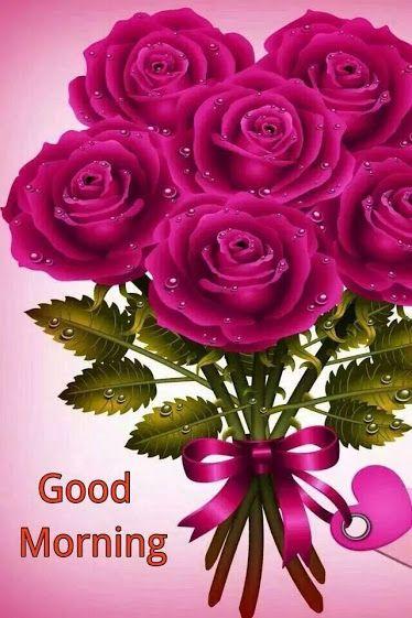 Romantische guten morgen bilder - Romantische guten morgen bilder