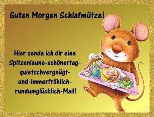 Guten Morgen Gif Bilder Bilder Und Sprüche Für Whatsapp Und