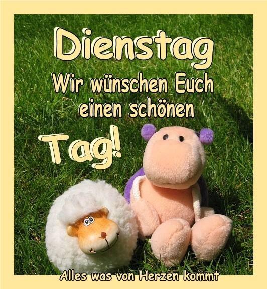 Dienstag Lustig Guten Morgen Bilder Und Sprüche Für Whatsapp Und