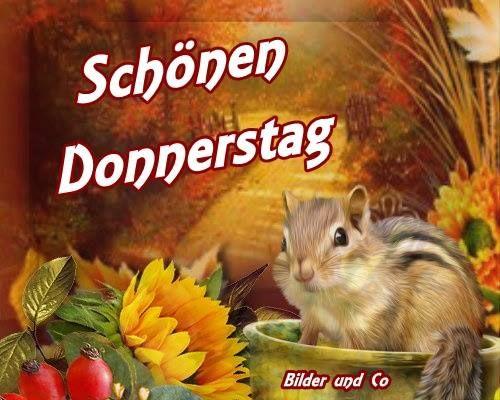 Donnerstag Lustige Sprüche Bilder Und Sprüche Für Whatsapp
