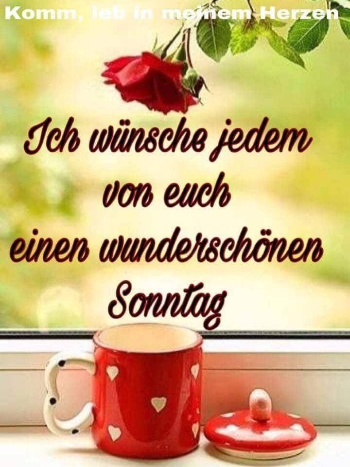 Guten Morgen Schönen Sonntag Gifs Bilder Und Sprüche Für