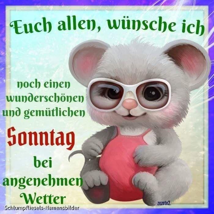 Schönen sonntag video whatsapp - Schönen sonntag video whatsapp