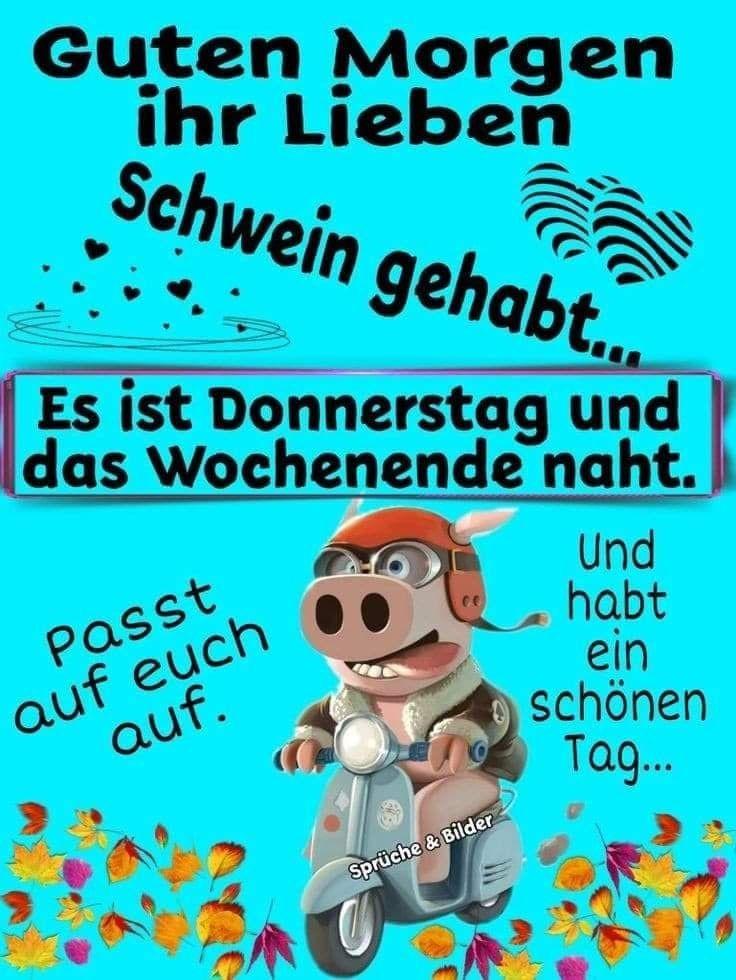 Donnerstag Frei Lustig Bilder Und Sprüche Für Whatsapp Und