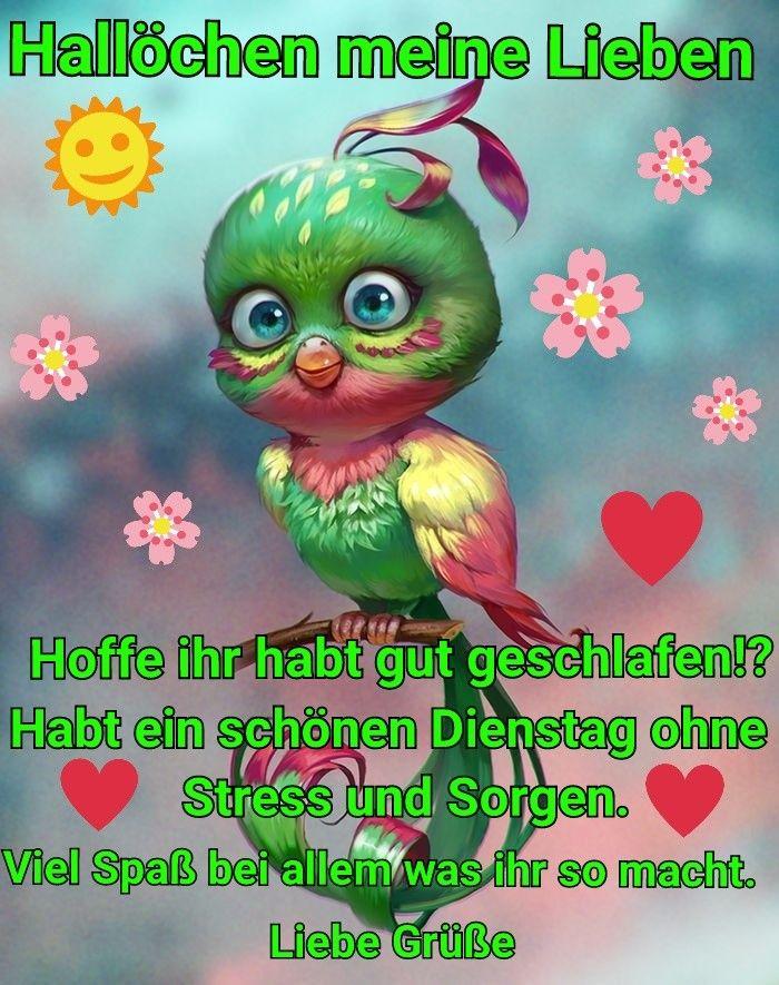 Spruch Schönen Dienstag Bilder Und Sprüche Für Whatsapp