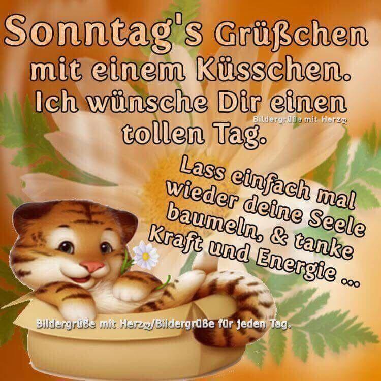 Sonntag Schönen Guten Morgen Bilder Und Sprüche Für Whatsapp Und