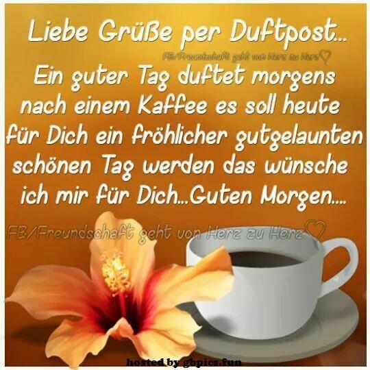 Funny Guten Morgen Bilder Und Sprüche Für Whatsapp Und