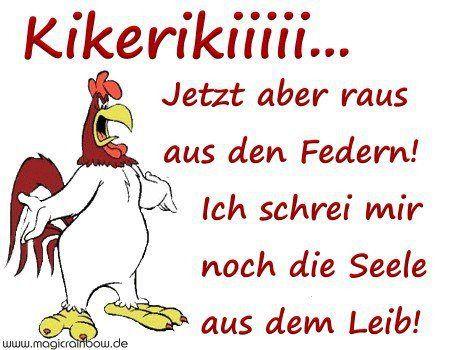 Witzige Guten Morgen Sprüche Facebook Bilder Und Sprüche