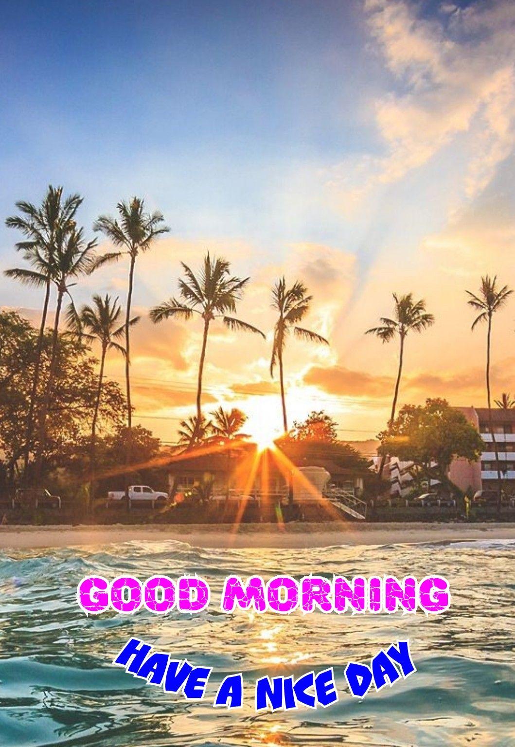 Wunderschönen Guten Morgen Sprüche Bilder Und Sprüche Für