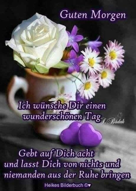 Zitate Guten Morgen Bilder Und Sprüche Für Whatsapp Und
