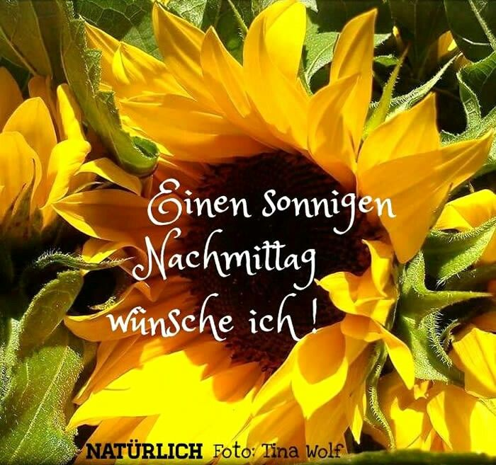 Bilder Schönen Tag Nachmittags - Bilder Schönen Tag Nachmittags