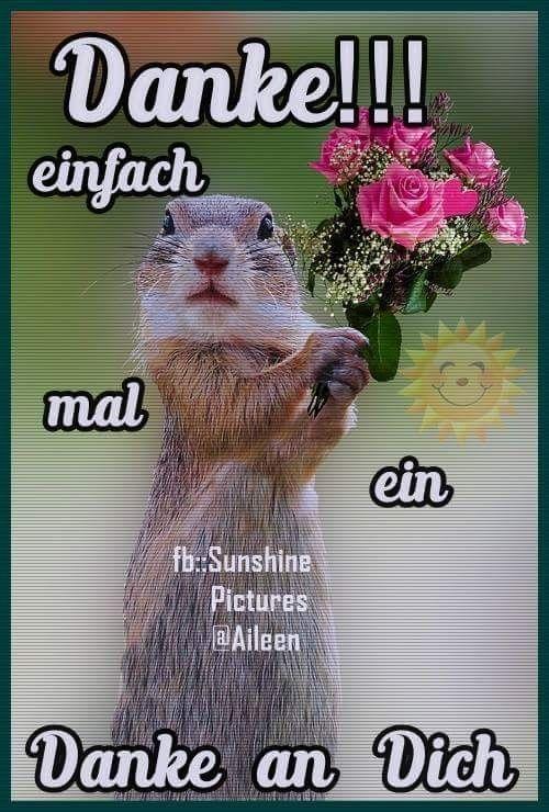 Bilder Spruche Geburtstag Bilder Und Spruche Fur Whatsapp Und