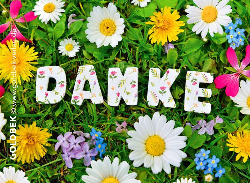 Danke sagen für glückwünsche facebook - Danke sagen für glückwünsche facebook