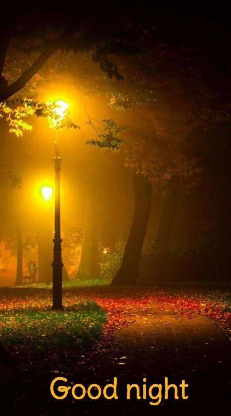 Eine gute nacht wünschen - Eine gute nacht wünschen