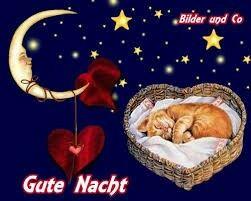 Eule gute nacht - Eule gute nacht