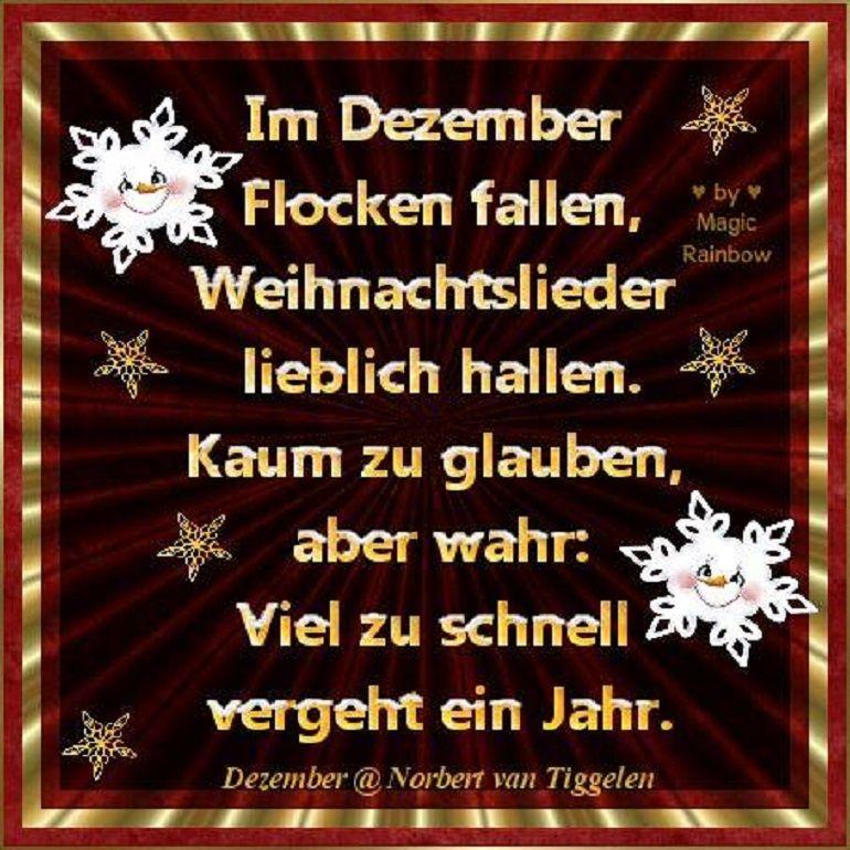 Frohe Weihnachten Witzige Bilder - Frohe Weihnachten Witzige Bilder