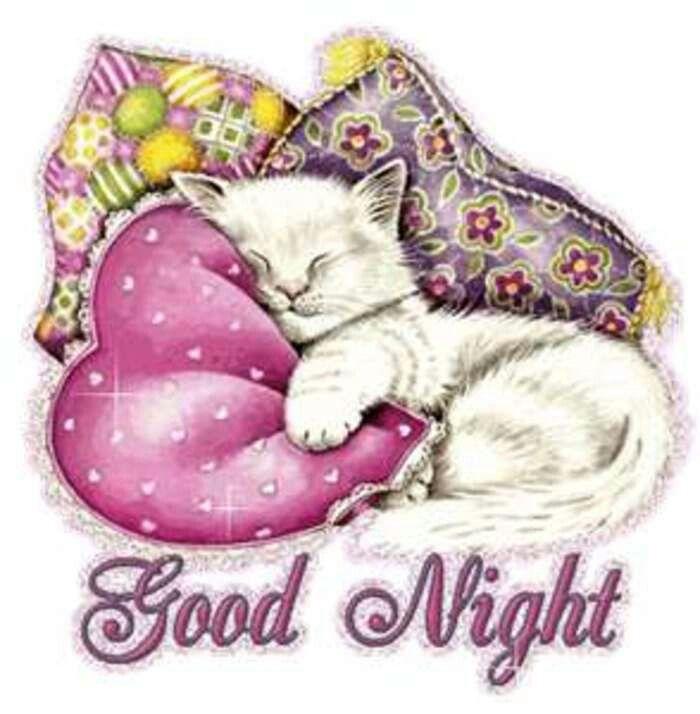 Gute nacht bärchen - Gute nacht bärchen